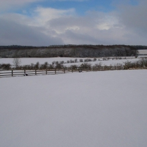 site view in winter5